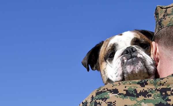 PTSD Dogs – The Story of Craig and his Service Dog Joey