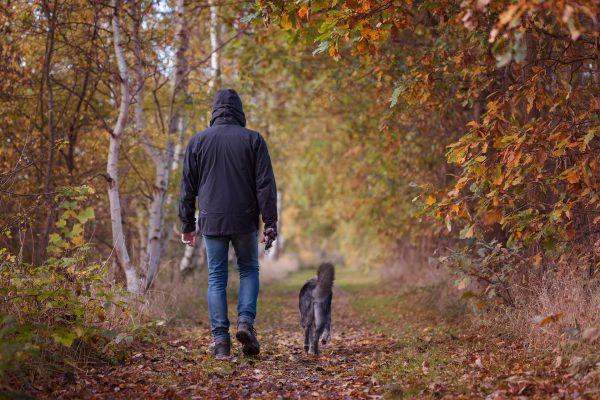 5 erreurs fréquentes à éviter lorsque vous faites de l'exercice avec votre chien