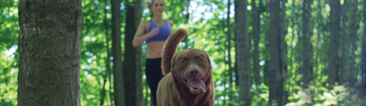 Nutrience Oakvill Marathon for you and your dog