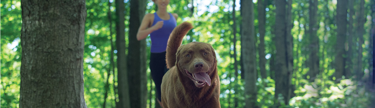 Running with your dog has many health benefits!