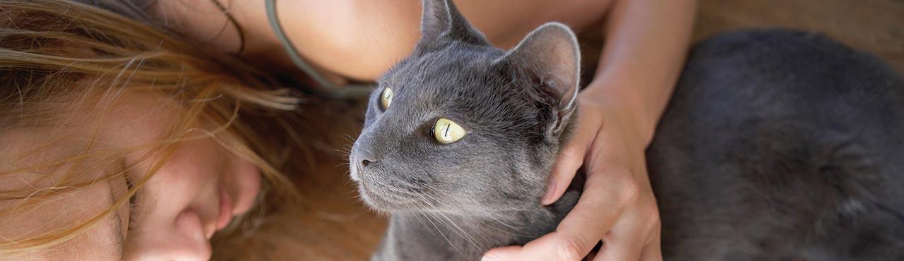 10 faits inusités que vous ne connaissiez probablement pas à propos des chats