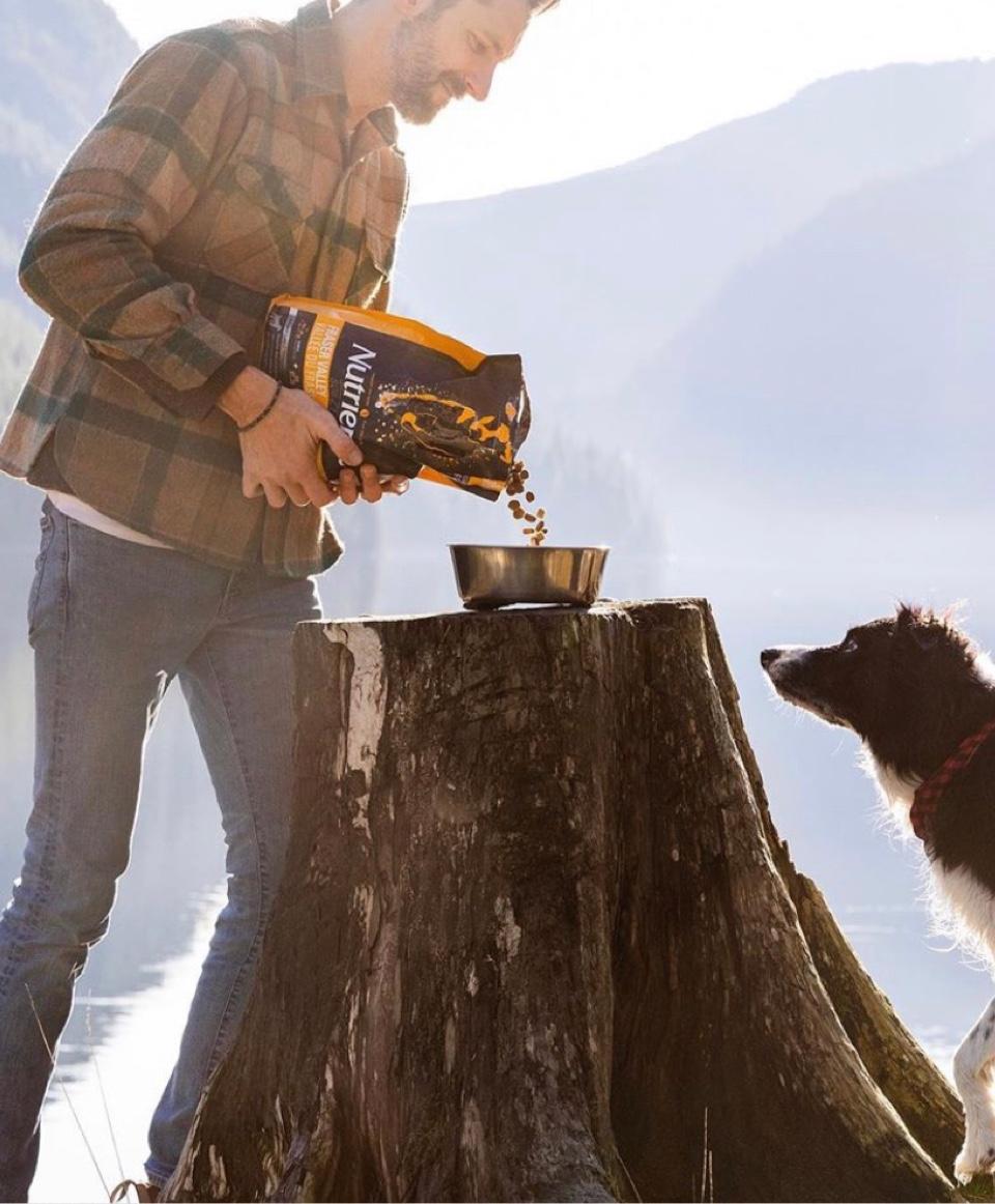 homme servant desc roquettes à son chien dans un bol sur un arbre coupé