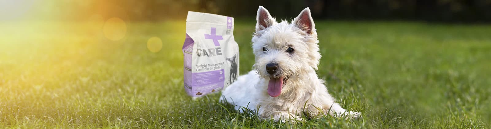 Nutrience Care Weight Management dog