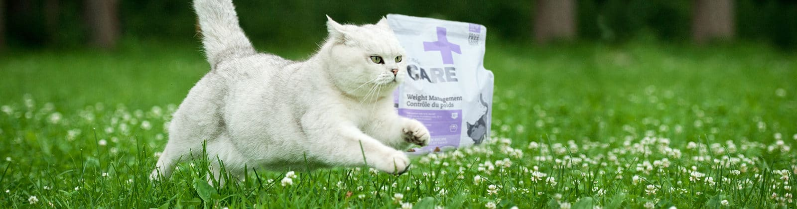 Nutrience Care Weight Management Cat