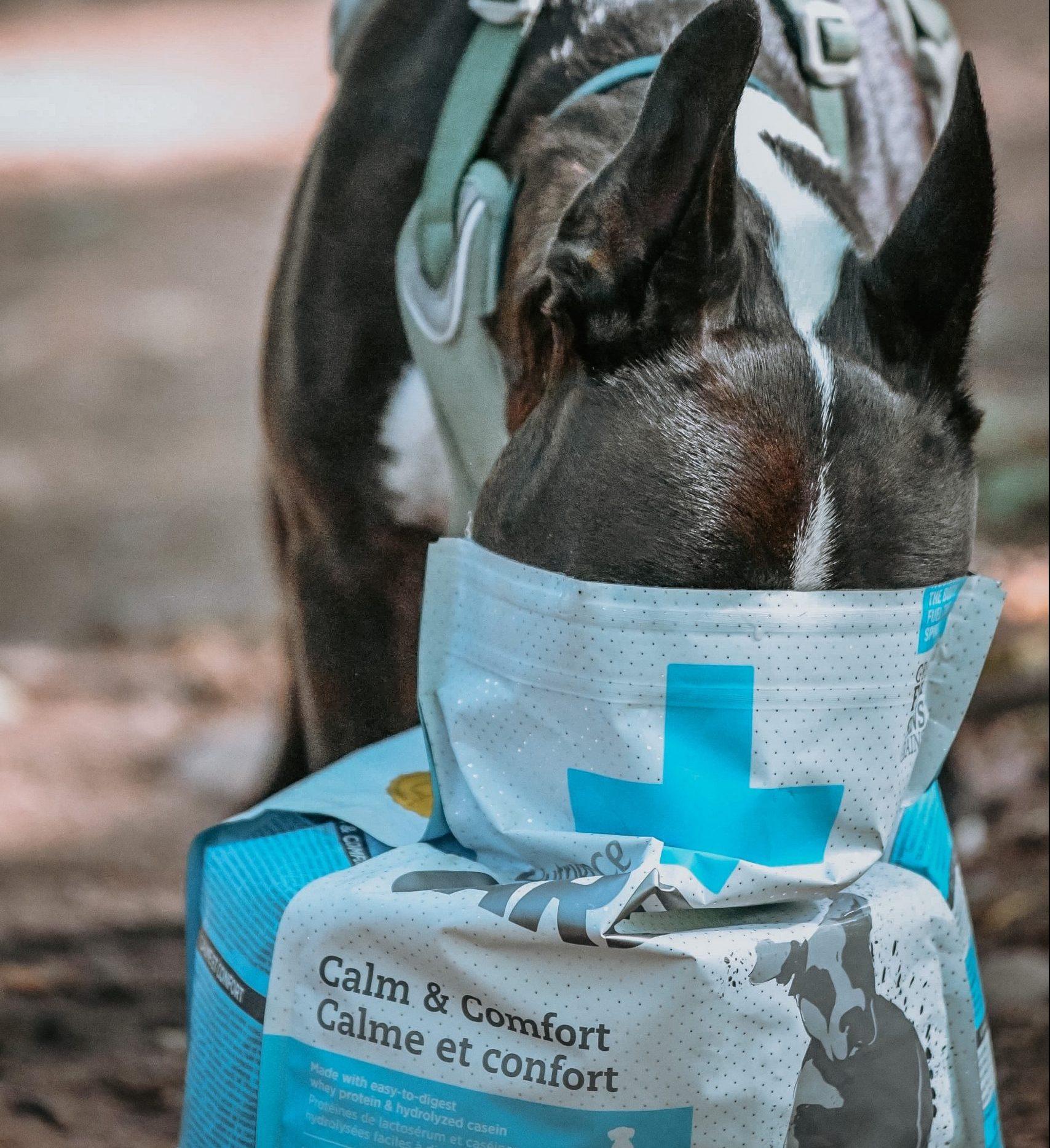 Nutience Calm & comfort Care dog