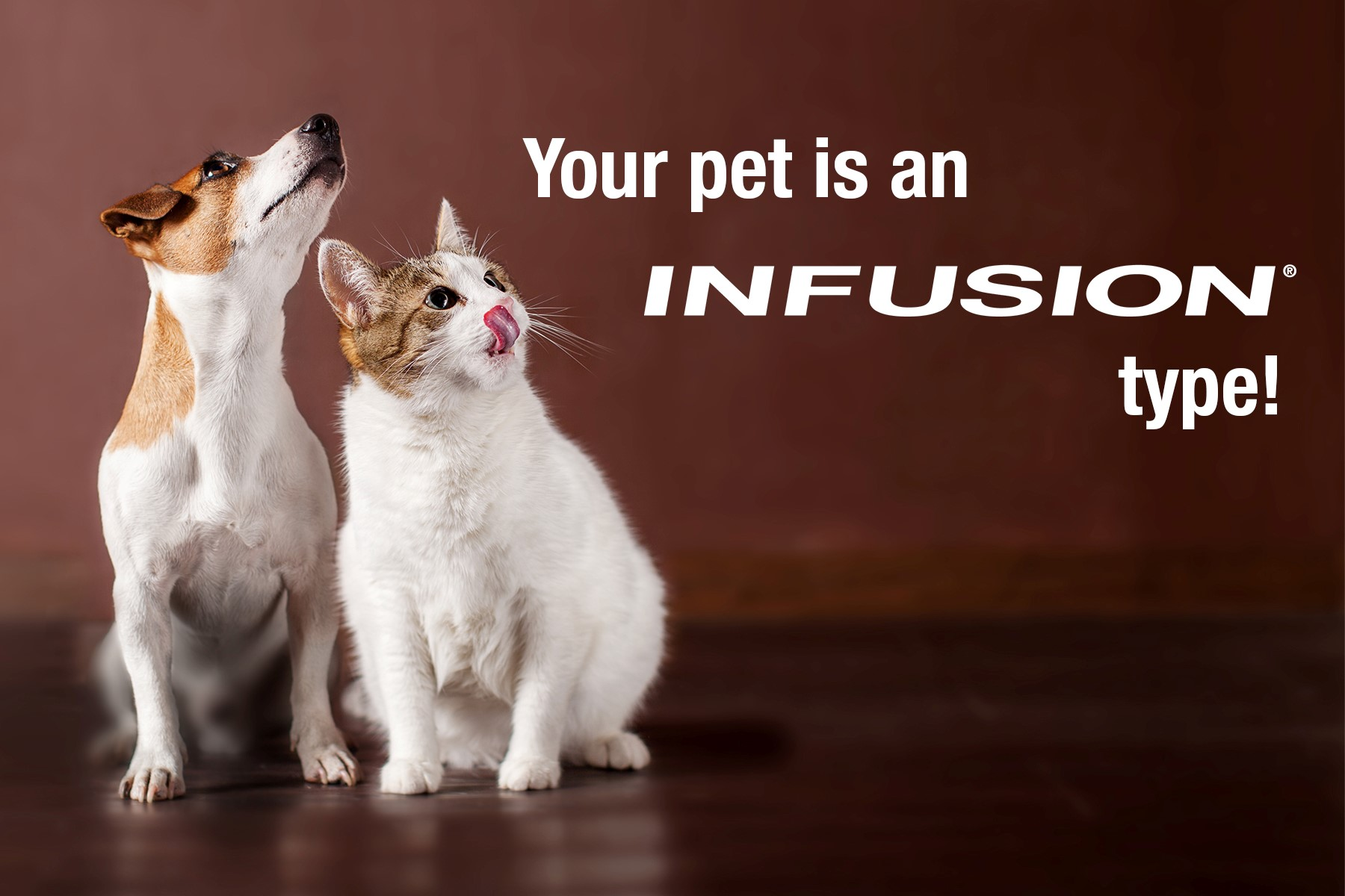Your pet is an Infusion pet
