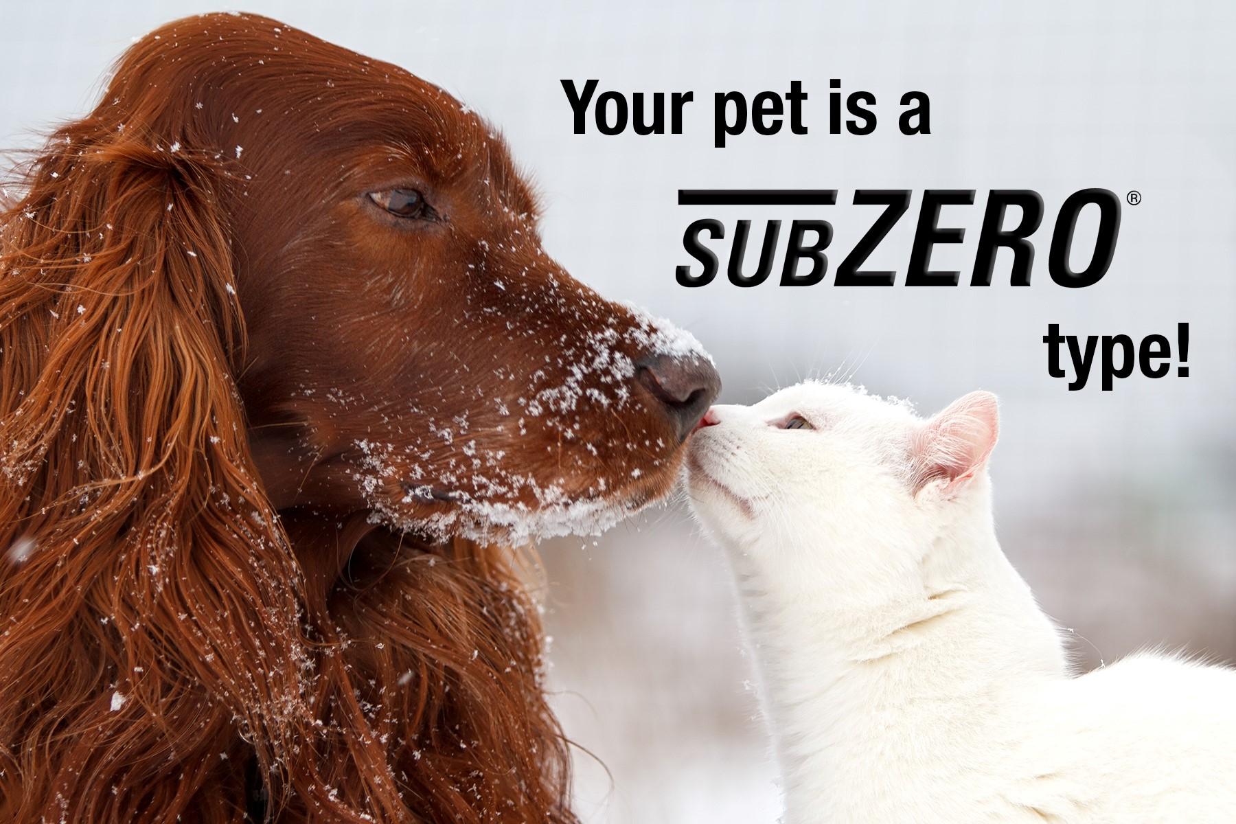 Your pet is a SubZero pet