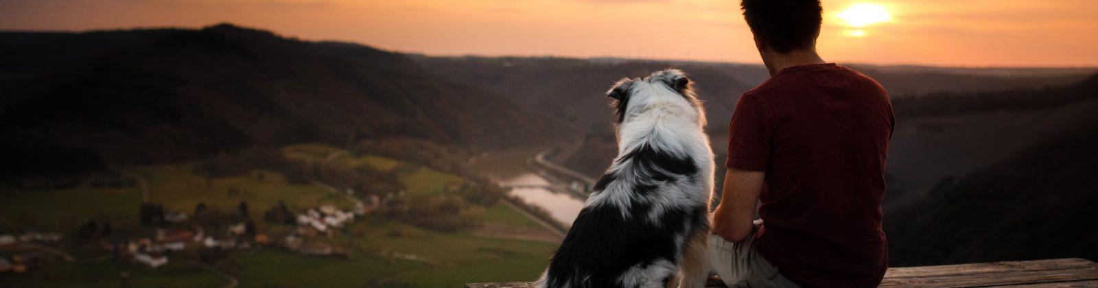man with dog sunset