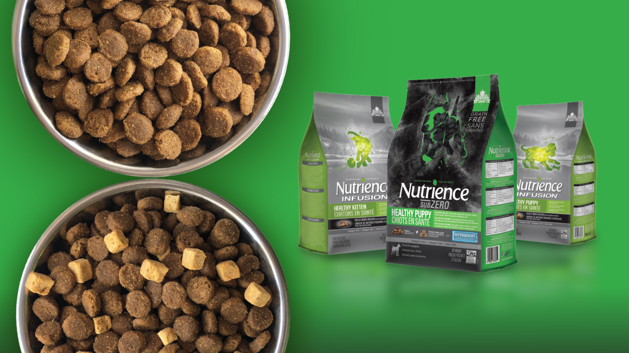Nutrience free sample puppy kitten food
