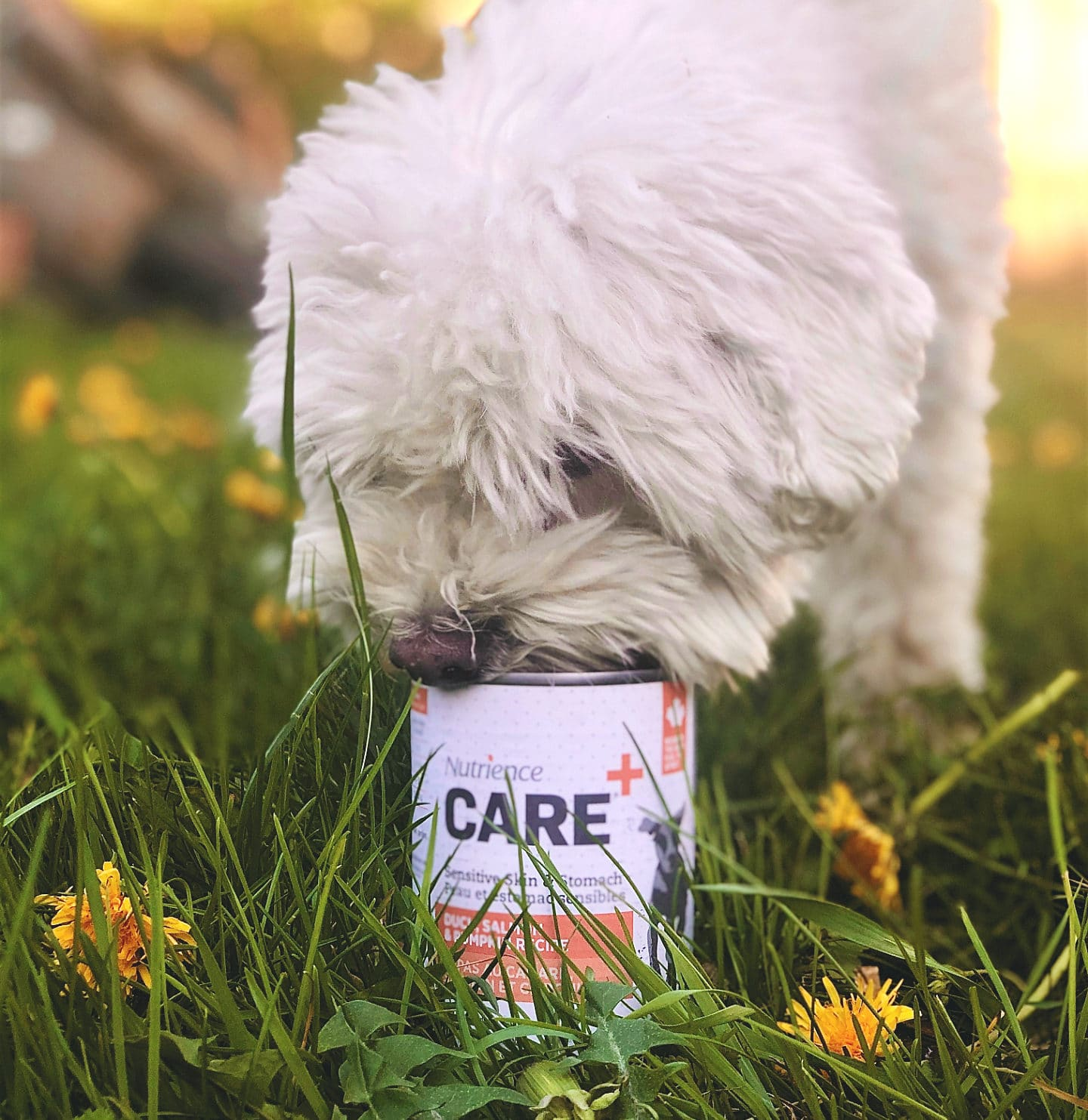 Care can