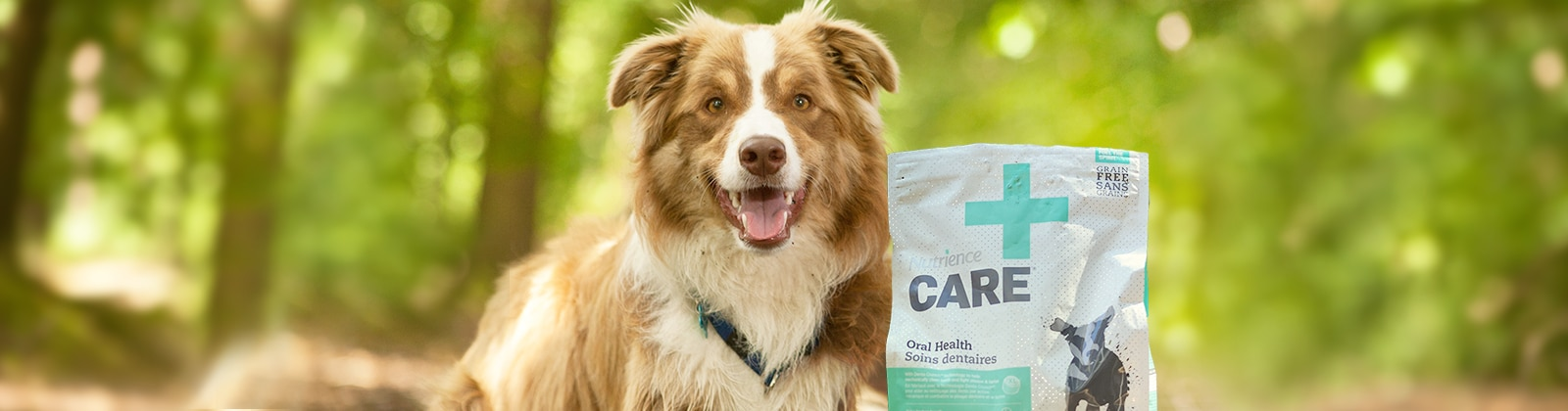 Nutrience Care for dogs