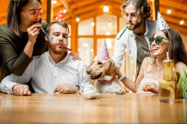 4 raisons de célébrer l'anniversaire de votre animal de compagnie